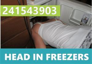 241543903 Head Inside The Freezer
